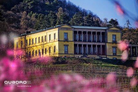 Schloss Villa Ludwigshöhe